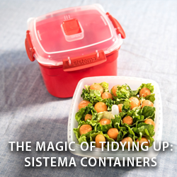 The Magic of Tidying Up: Sistema Containers