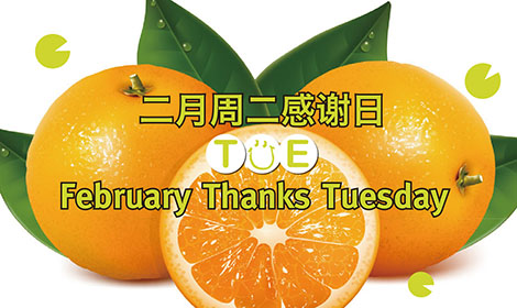 February Thanks Tuesday