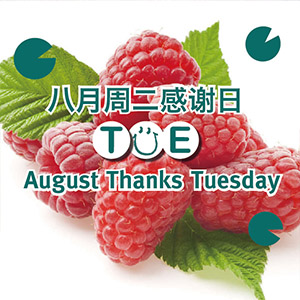 August Thanks Tuesday