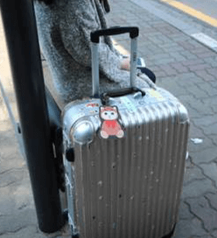 Stylish and Personalized Suitcases