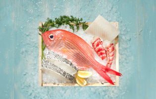 Love Seafood? Buy Sustainable Ones