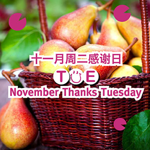 November Thanks Tuesday