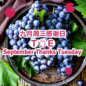 September Thanks Tuesday